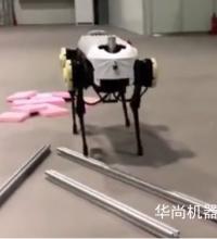 这个机器人太恐怖 浙大机器人没有头